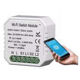 WiFi Double Light Switch Module TUYA